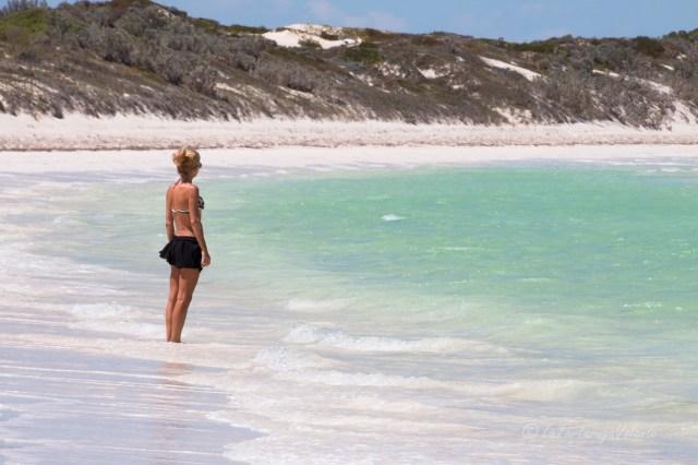 Australia Occidentale, viaggio a nord del western australia