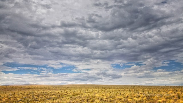 Western Australia infiniti campi di grano