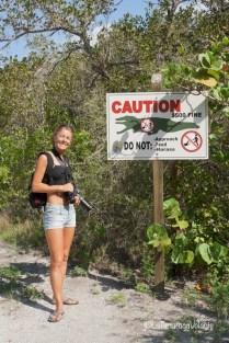 Florida io alle Everglades