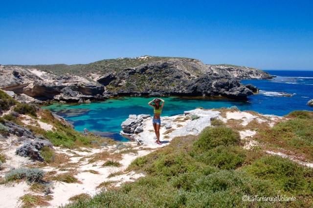 western australia sud, rottnest island