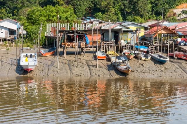 Borneo, case sul fiume