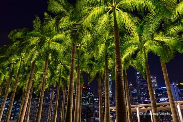 Singapore, Marina bay on night