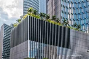 Singapore, alberi e piante ovunque