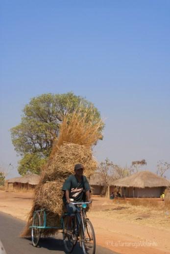 Malawi, in bici con la paglia
