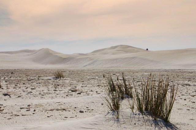 deserto pinnacoli, dune di lancelin verso sera