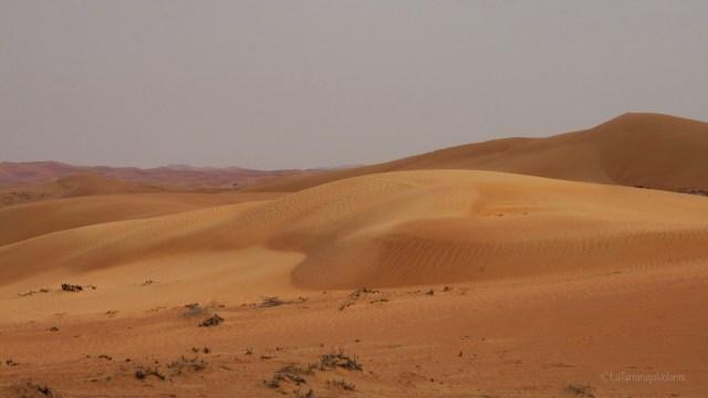 Dubai, deserto infinito