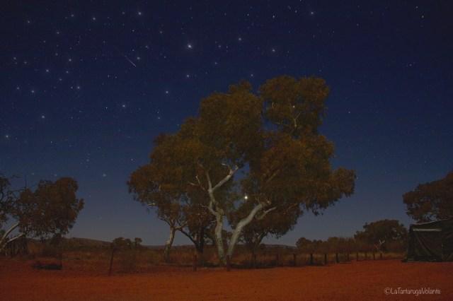 outback australiano, campeggio di notte