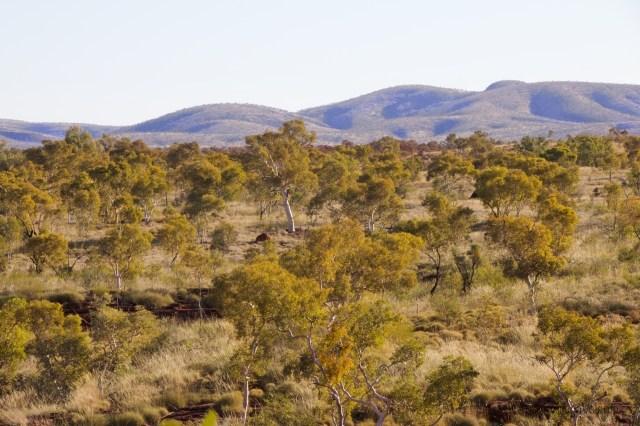 outback australiano, paesaggio kaijini