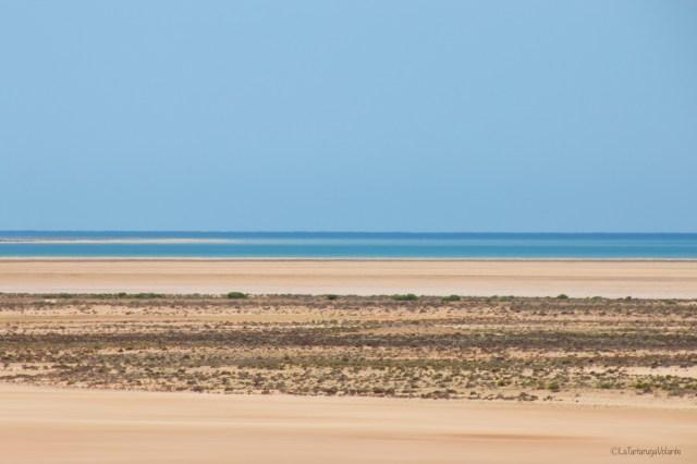 outback australiano, particolare dal lookout