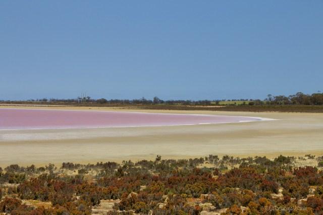 Outback australiano,piccolo lago rosa a Blowholes