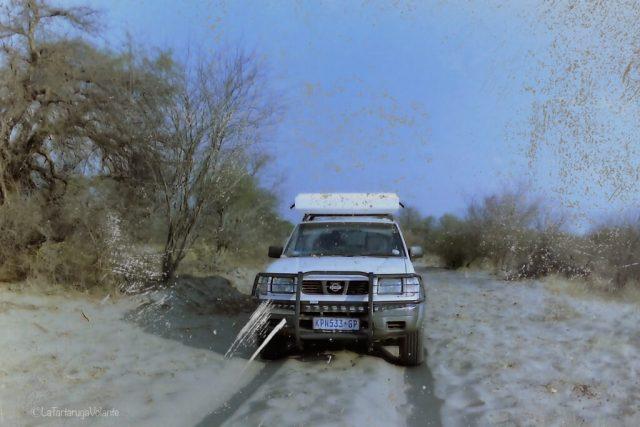 Viaggio in Botswana, la nostra macchina