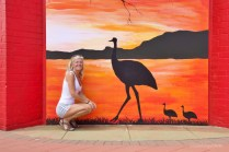kalgoorlie emu and me