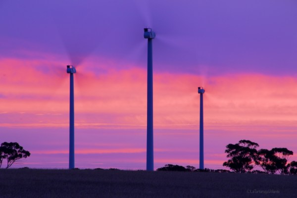 merredin wind farm