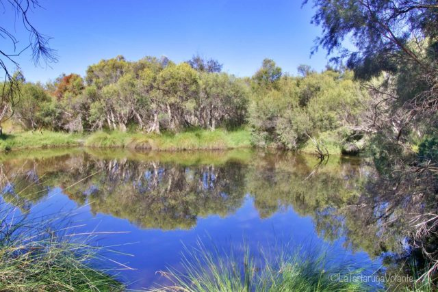 Vivere a Perth, Mayland