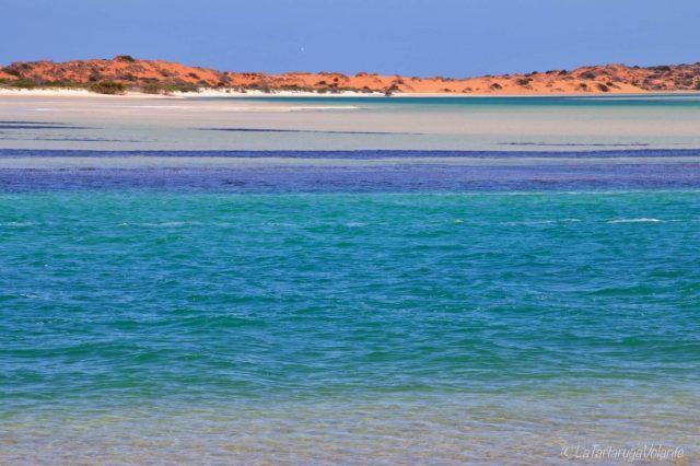 la Blue lagoon