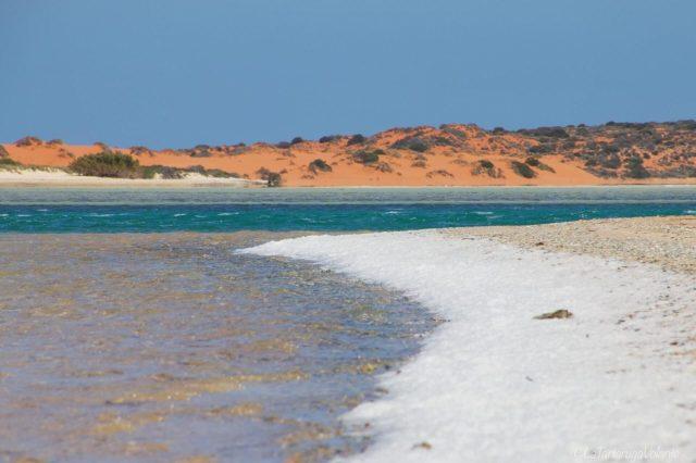 l'acqua della Blue Lagoon