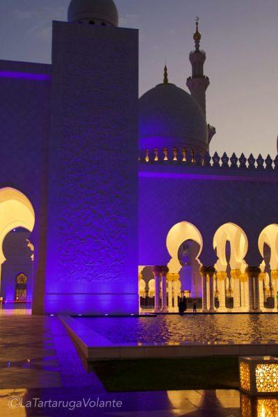 scorcio di sera della moschea di abu dhabi