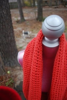 coral cowl (with max in the background)