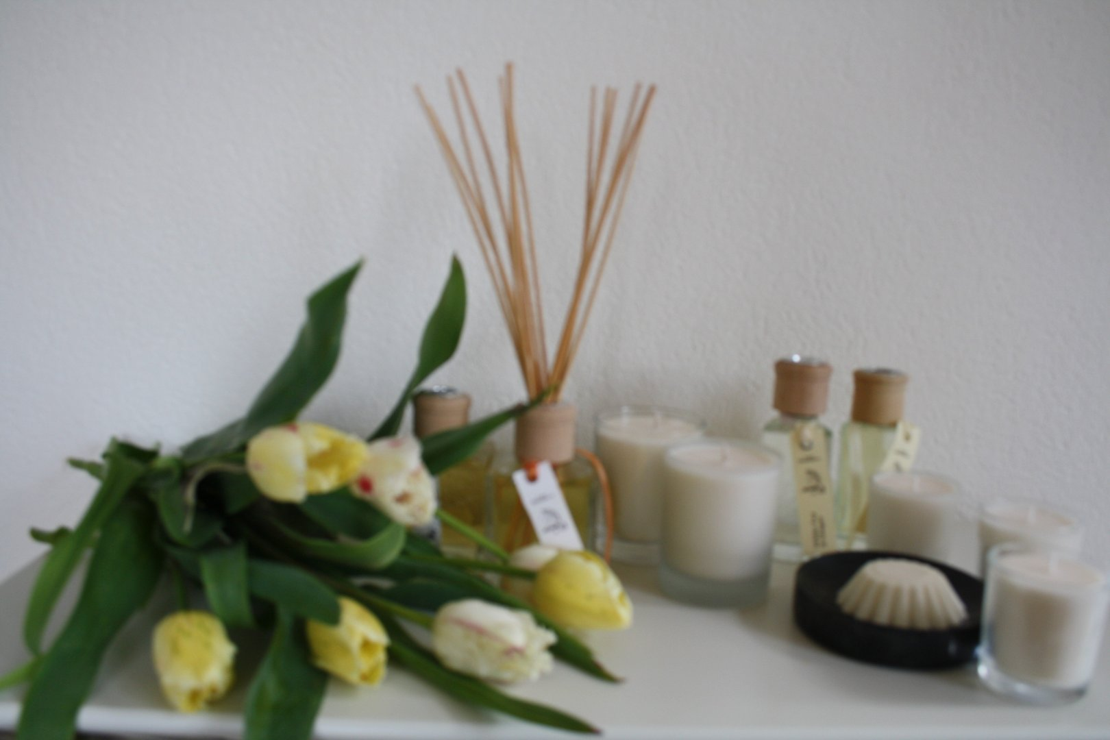 Late Bloomers wellness collection