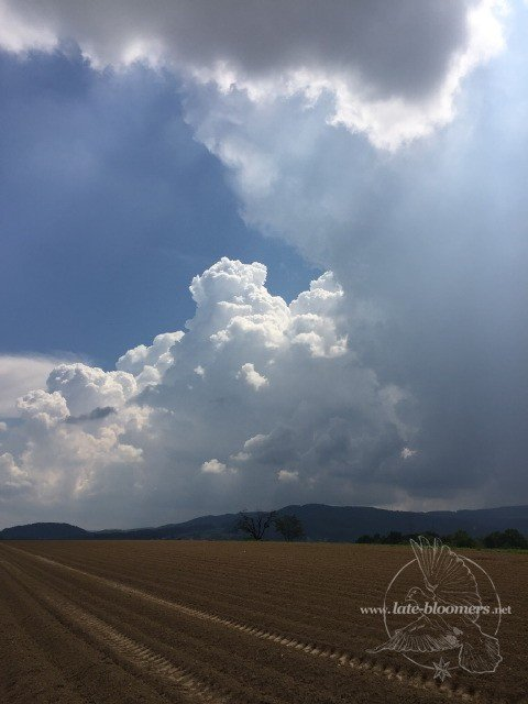Wordless Wednesday: Clouds