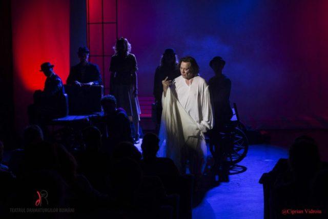 Calatoarea si Shakespeare Marius Bodochi