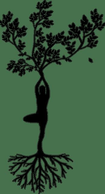 Pour être zen, il faut des racines pour s'encrer à la terre et des branches pour le souffle de la légèreté
