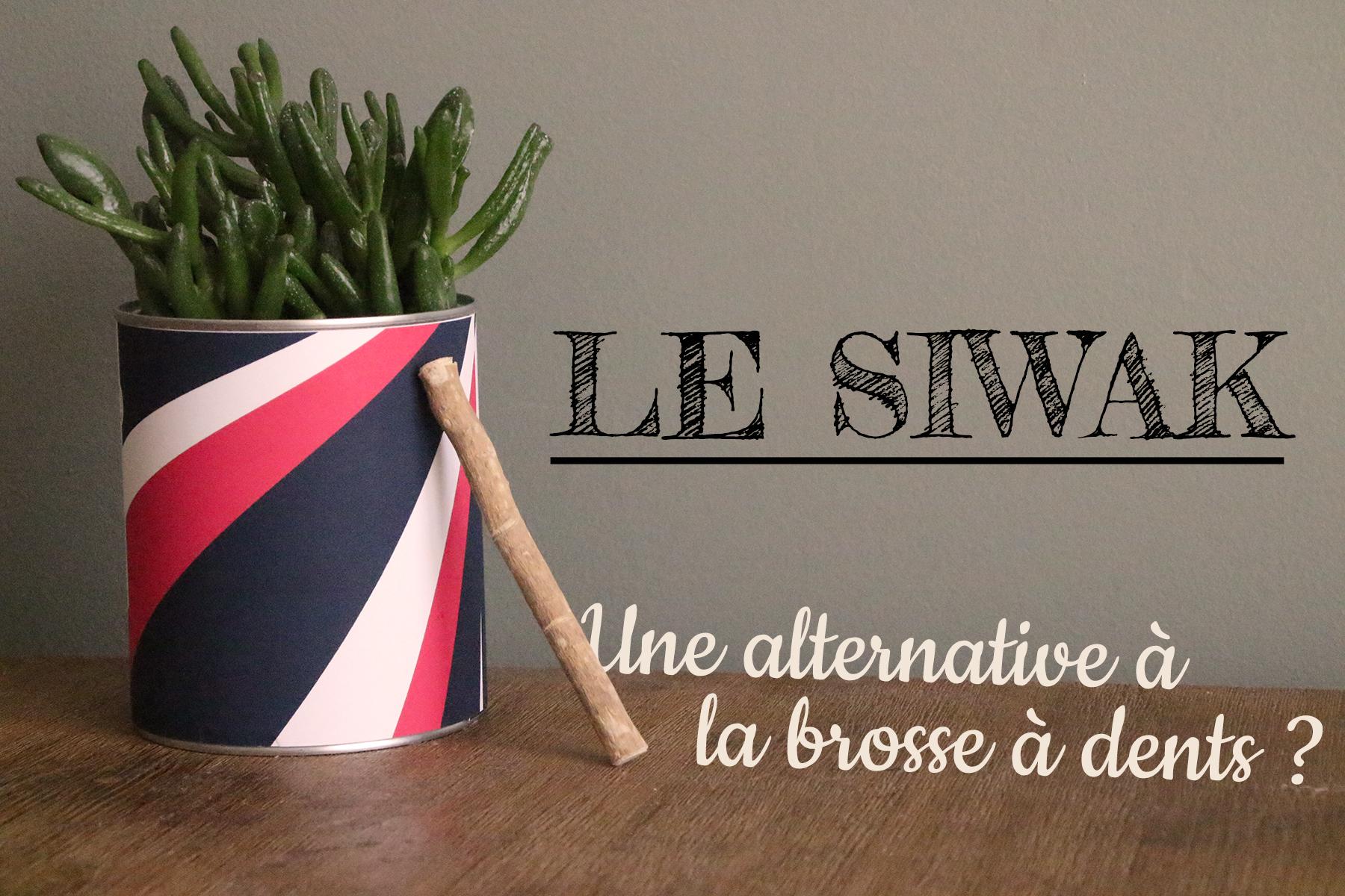 Le siwak - L'atelier de Lexie