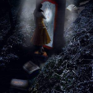 'De l'autre côté du miroir'