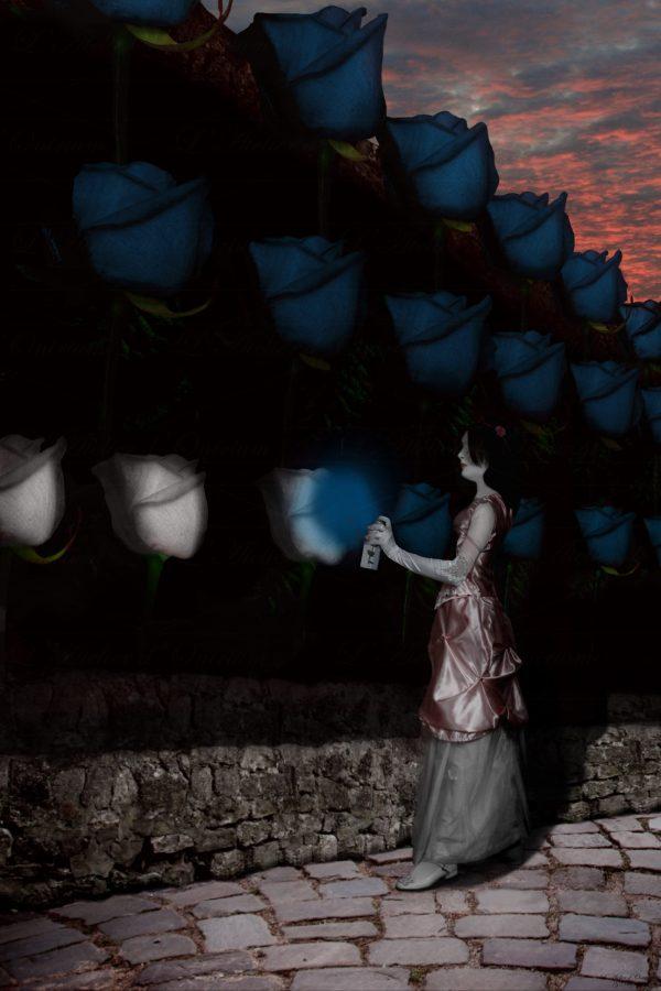 Fantastique alice peint rose géantes blanches en bleu bombe peinture