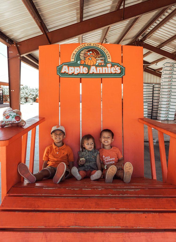 Apple Pickin' at Apple Annie's