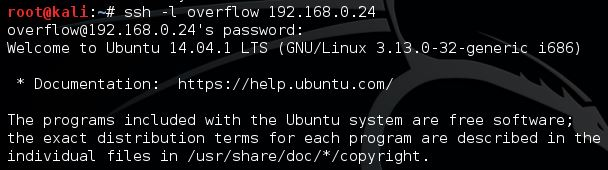 successful SSH connection