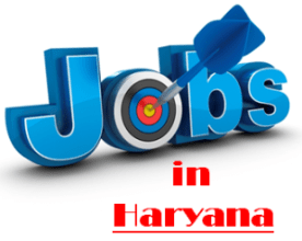 Current Jobs in Haryana
