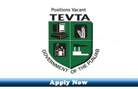 Jobs in Government of Punjab Technical Education and Vocational Training Authority Govt Technical Training Institute Multan 2020 Apply Now