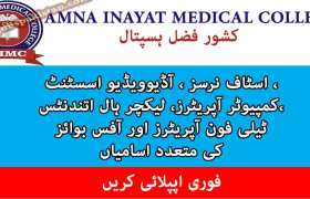 Jobs in Amna Inayat Medical College / Kishwar Fazal Hospital 2020