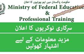 Jobs in Ministry of Federal Education and Professional Training 2020