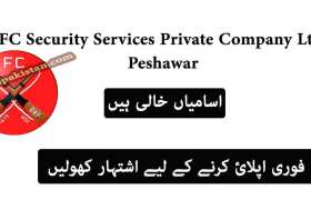 Jobs in FC Security Services Private Company Ltd Peshawar 2020
