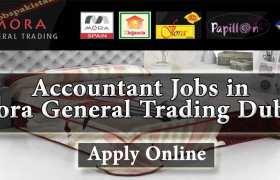 Mora General Trading Dubai Jobs 2020