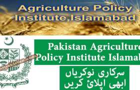 Jobs in Govt of Pakistan Agriculture Policy Institute Islamabad 2020