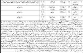 Ministry of National Food Security and Research Animal Quarantine Department Jobs 2020