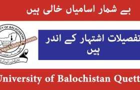 University of Balochistan Quetta Jobs 2020