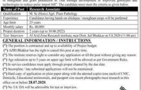 Arid Zone Research Institute Bhakkar Jobs 2020