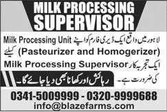 Blaze Farms Lahore Jobs 2020