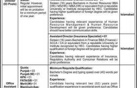 National Electric Power Regulatory Authority NEPRA Islamabad Jobs 2020