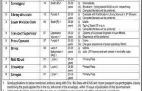 National Institute of Population Studies (NIPS) Islamabad Jobs 2020
