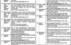 Punjab Public Private Partnership PPP Authority Jobs 2020
