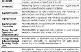 The University of Faisalabad Jobs 2020