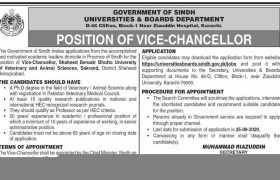Universities & Boards Department Karachi Jobs 2020