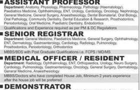 Bakhtawar Amin Medical and Dental College Multan Jobs 2020