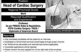 NICVD Healthcare Network Sindh Jobs 2020