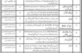 ZEDEM International Private Limited Rawalpindi Jobs 2020